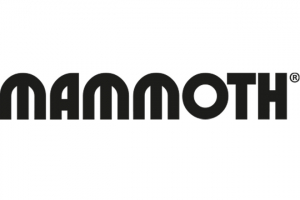 Mammoth appoints new team members