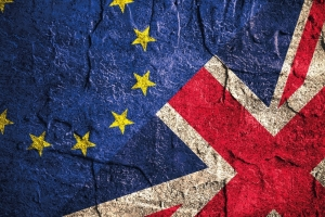 Import preparations for a no-deal Brexit