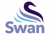 New appointment to lead Swan's ecommerce offer